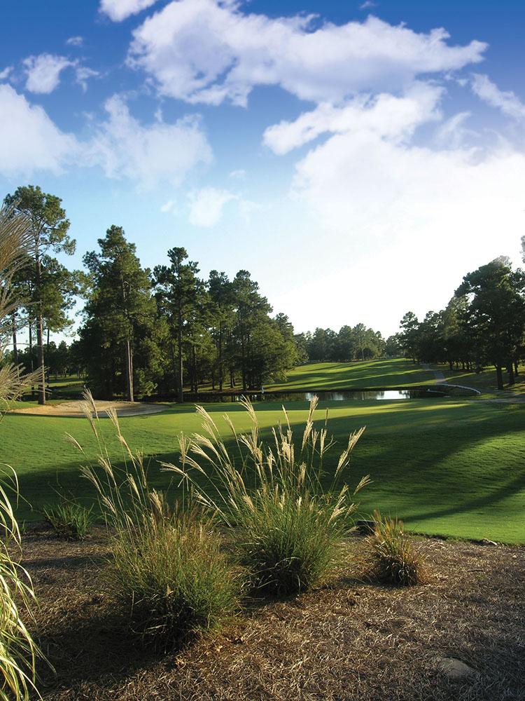 Lake Marion Golf Villas